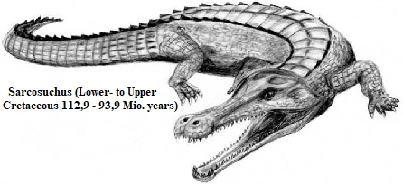 Drawing of a Sarcosuchus. Very similar to a modern crocodile.